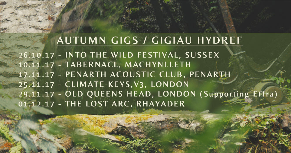 cynefin folk gig dates